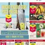 Folleto Aldi ofertas 28 de julio al 3 de agosto 2021