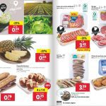 Folleto Lidl Alimentación 15 al 21 de julio 2021